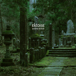 Ektoise – Down River artwork