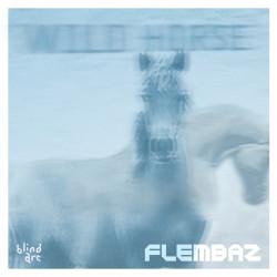 Flembaz – Wild Horse artwork