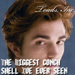 Toads, Inc. – The Biggest Conch Shell I've Ever Seen artwork