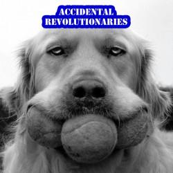 Accidental Revolutionaries – Accidental Revolutionaries artwork